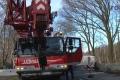 2018-02-06 10517 Goldenstedt Schweinetransporter (NWM-TV) 10