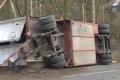 2018-02-06 10517 Goldenstedt Schweinetransporter (NWM-TV) 17