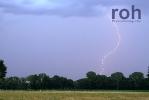 roh-05062011-01