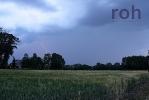 roh-05062011-02