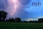 roh-05062011-04