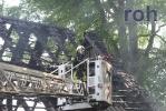 roh-29052010-40